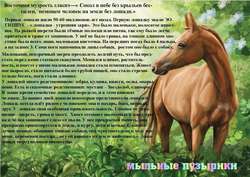 Стих лошадь жеребенок